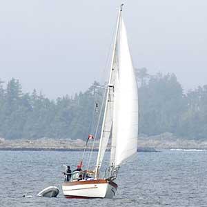 sailboat_4118